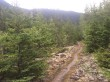 Single track on the Chilkoot